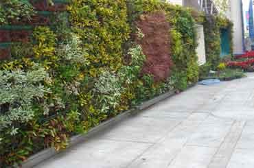 tuinaanleg hoveniersbedrijf geleen green creations